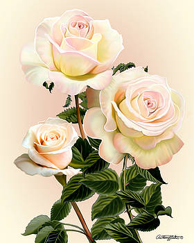 Roses by Anthony Seeker