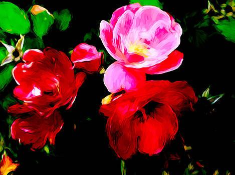 Roses As Art by Debra Lynch