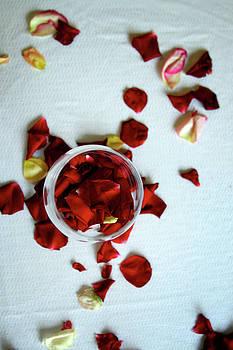 Roses by Dmitriy Ko