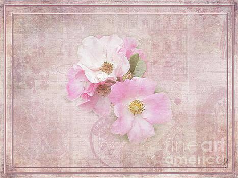 Roses Eternal by Victoria Harrington
