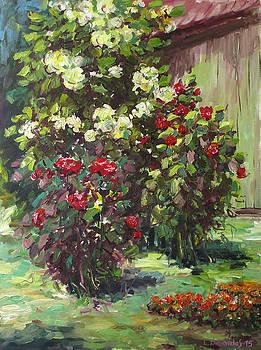 Roses in the Garden by Liudvikas Daugirdas