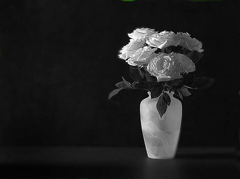 Roses on Black by Mark Wagoner