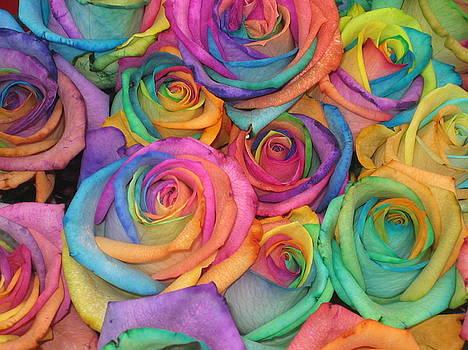 Roses on Ramblas by En Ze
