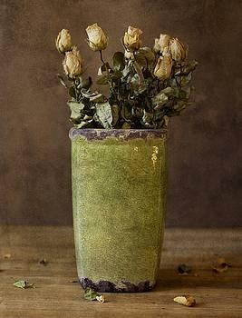 Roses - Still life by David Heger