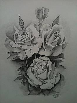 Roses by Summer Bhullar