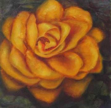 Rosetta Rose by Selma Cooper