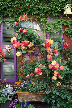 Rosey Window II by Kelly S Andrews