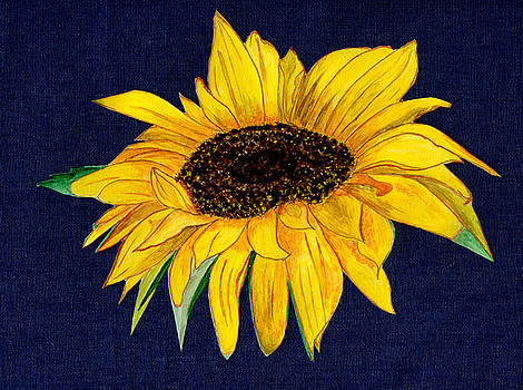 Rosie Sunshine on Denim by Anne Gitto