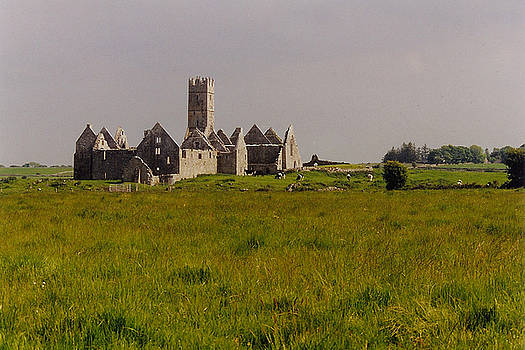 Ross Errilly Friary - Ross Abbey County Galway Ireland by Bob See