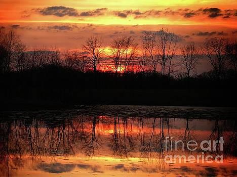 Scott B Bennett - Rosy Mist Sunrise