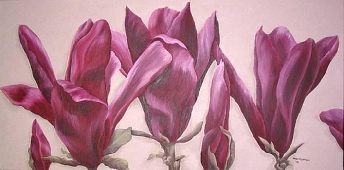 Rote Magnolie by Haike Espenhain