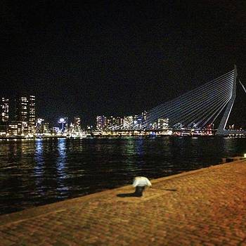 #rotterdam #view #amazing #picoftheday by Marco Capo