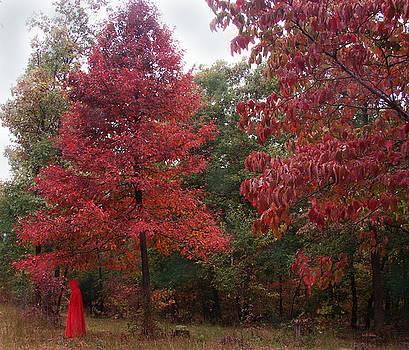 Alana  Schmitt - Rouge Autumn 1