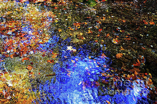 Rough Creek Abstract by Paul Mashburn