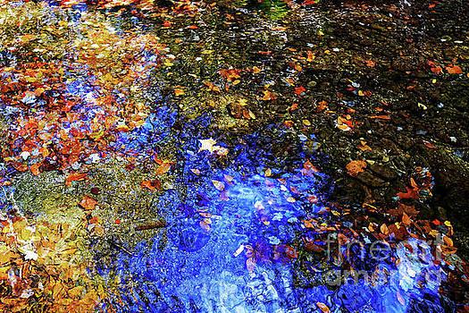 Paul Mashburn - Rough Creek Abstract