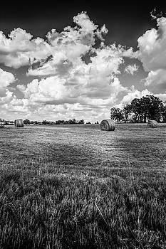 Round Bales In Texas 001 by Lon Casler Bixby