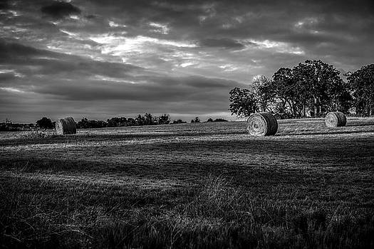 Round Bales in Texas 004 by Lon Casler Bixby
