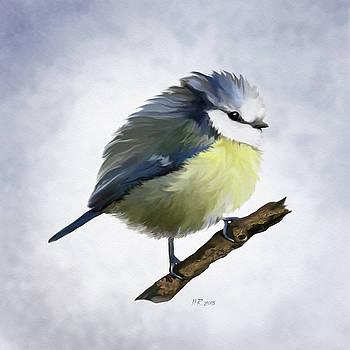 Bamalam  Photography - Round Bluetit  - Cyanistes caeruleus