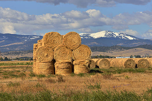 Round Hay Bales and Mountain by Kae Cheatham