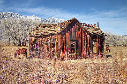 Round Valley Shack by Newman Artography