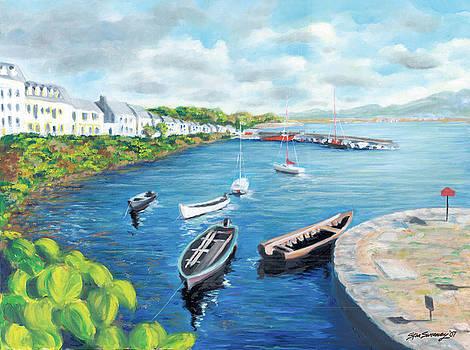 Roundstone Harbor by Stan Sweeney