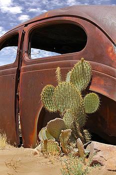 Mike McGlothlen - Route 66 Cactus