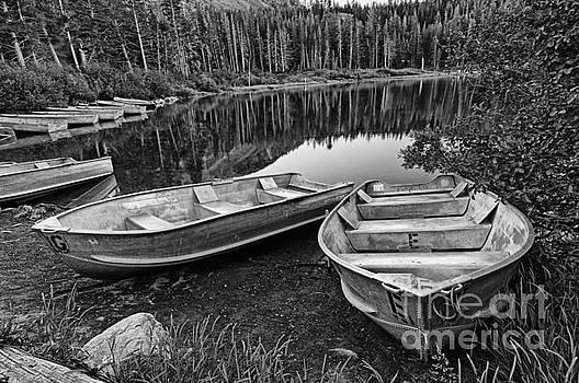 Jamie Pham - Row Boat Lake