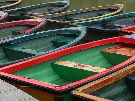 Row Boats by Gina S