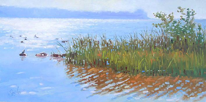 Rowleys Bay- Plein Air Door County Lake Michigan by Larry Seiler