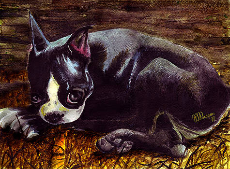 Roxanne - Boston Terrier by Jean-Marie Poisson