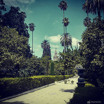 Royal Alcazar Gardens. Seville. by Miguel Angel