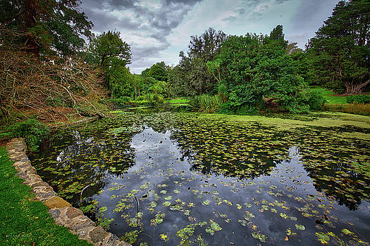 Royal Botanical Gardens, Melbourne by Ross Henton