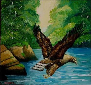 Royal Eagle by Jean Pierre Bergoeing
