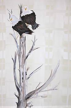 Royal Perch by Jennifer  Lane