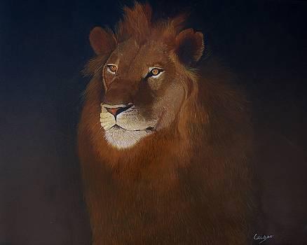 Royalty by Jean Yves Crispo