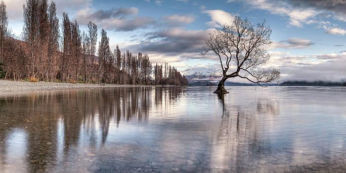 Roys Bay by Brad Grove
