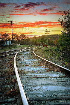 RR Tracks At Sunset by Brian Wallace