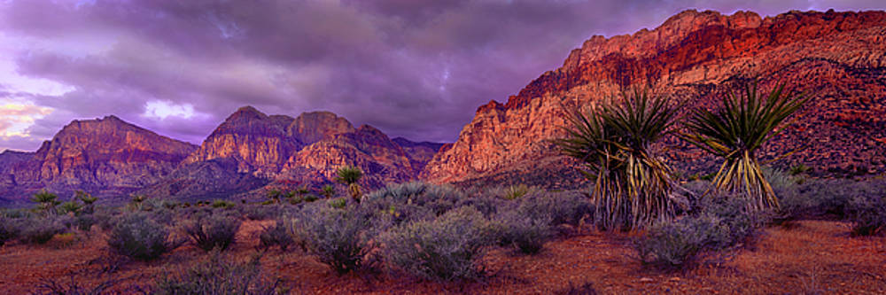 Red Rock Canyon by Mikes Nature