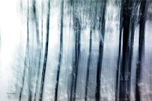 Rubatosis by Randi Grace Nilsberg