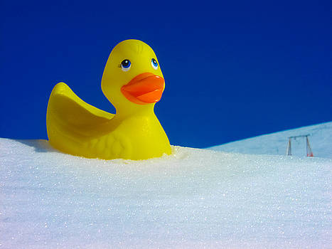 Rubber Duckie in Snow by Kimberly Blom-Roemer