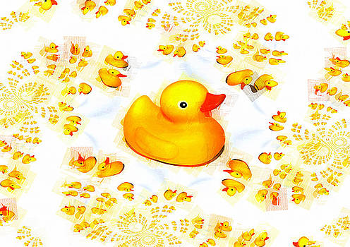 Rubber Ducks by P Donovan