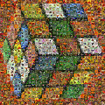 Rubik with butterflies by Gilberto Viciedo