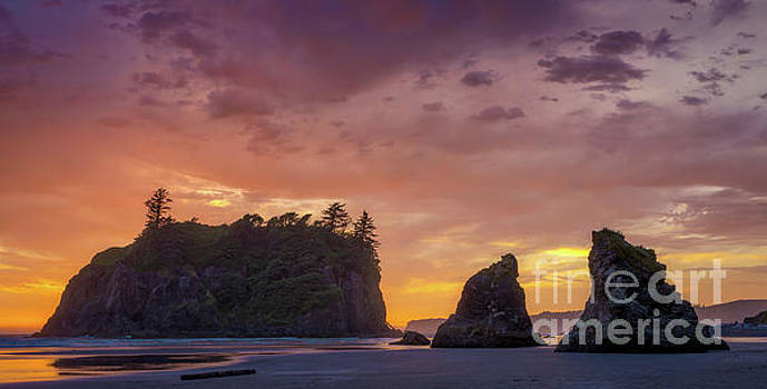 Ruby Beach Glorious Sunset by Jerry Fornarotto
