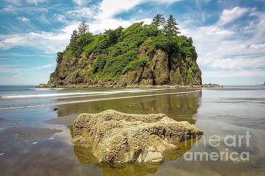 Ruby Beach by Jerry Fornarotto