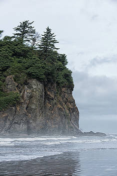 Ruby Beach Sea Stack by Dennis Kowalewski
