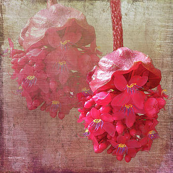 Ruby Colored Orchid by Rosalie Scanlon