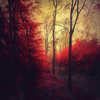 Ruby Red Forest by Dirk Wuestenhagen