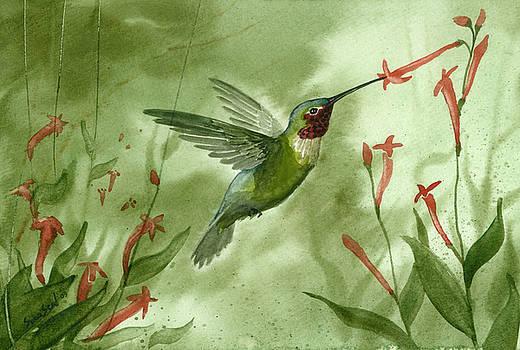 Ruby Throated Hummingbird by Sean Seal