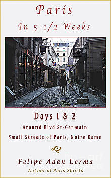 Felipe Adan Lerma - Rue Gregorie De Tours Cover Art