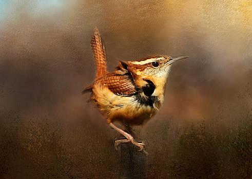 Ruffled Feathers by TnBackroadsPhotos